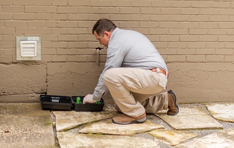 romney pest control professional installing a rodent bait station