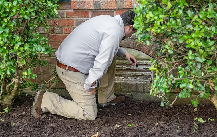 dallas pest control professional performing a termite inspection