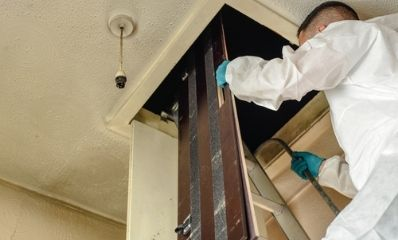 pest-entry-point-inspection