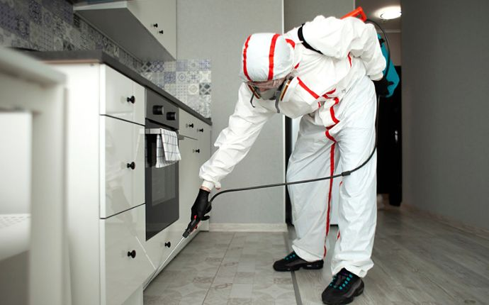 A pest control technician applying pesticide in a kitchen